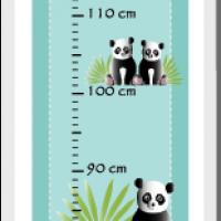 Kit toise pandas dessin