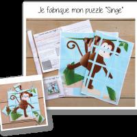Photo kit puzzle singe